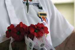 Tom Davis: Remembering Memorial Day